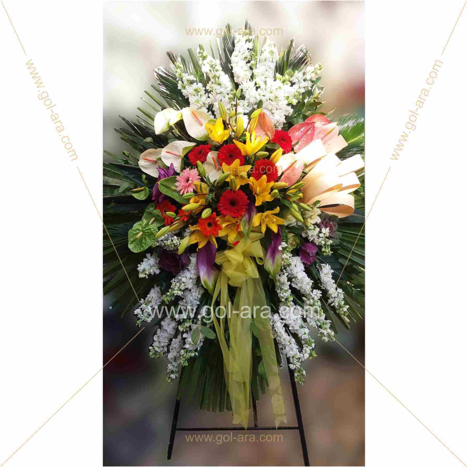 گل برای افتتاحیه